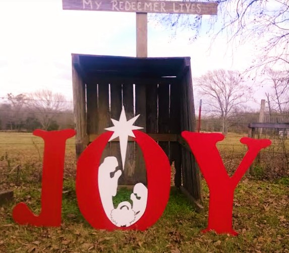 joy our redeemer lives